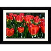 """Amanti Art Andy Magee """"In the Garden"""" Framed Print Art, 19.62"""" x 26.62"""""""