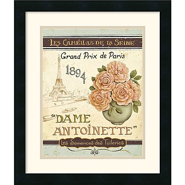 Amanti Art Daphne Brissonnet in.French Seed Packet II in. Framed Print Art, 20in. x 17in.