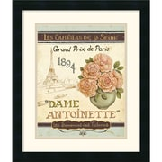 "Amanti Art Daphne Brissonnet ""French Seed Packet II "" Framed Print Art, 20"" x 17"""