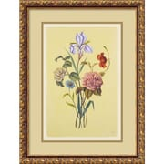 Amanti Art Botanical Bouquet V Framed Print Art, 21.88 x 16.62