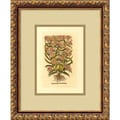 Amanti Art in.Aster(Eupatorium Cannabinum)in. Framed Print Art, 15.88in. x 12.88in.