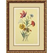 "Amanti Art ""Botanical Bouquet I"" Framed Print Art, 21.88"" x 16.62"""