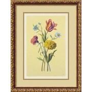 """Amanti Art """"Botanical Bouquet II"""" Framed Print Art, 21.88"""" x 16.62"""""""