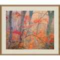 Amanti Art William in.Maple Trees in Fog Near Eagle Lake, Acadia National...in. Framed Art, 28in. x 33.38in.