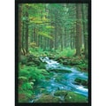 Amanti Art in.Forest Creekin. Framed Print Art, 37.38in. x 25.38in.