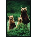 Amanti Art  in.Three Bearsin. Framed Animal Art, 37.38in. x 25.38in.