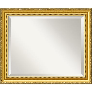 Amanti Art 23.38in. x 19.38in. Colonial Medium Wall Mirror, Gold
