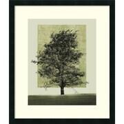"Amanti Art Harold Silverman ""Natures Shapes II"" Framed Art, 28.12"" x 24"""