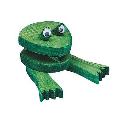 S&S® Allen Diagnostic Module Frog Note Holder, 12/Pack