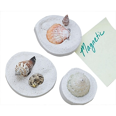 S&S® Fossil Shell Magnets Craft Kit, 24/Pack