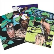 Geeperz™ Birds of Prey Craft Kit, 12/Pack