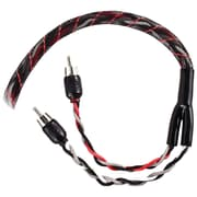 T-Spec 14' V12 Series RCA Audio Cable With Quad Split Tip, Black/Red