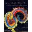 Animal Earth: The Amazing Diversity of Living Forms Ross Piper Hardcover