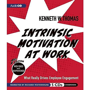 Intrinsic Motivation at Work, 2nd Edition: What Really Drives Employee Engagement