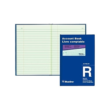 Blueline® Accounting Book, A1750-01, 24 Lines, 100 Sheets, 8-1/4