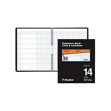 Blueline® 767 Series Double Format Columnar Pad, A767-14T, 14 Columns, 10