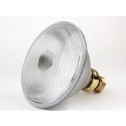 Plusrite® 70 Watt 120 Volt PAR38 Clear Halogen Bulb, Soft White, 5/Pack