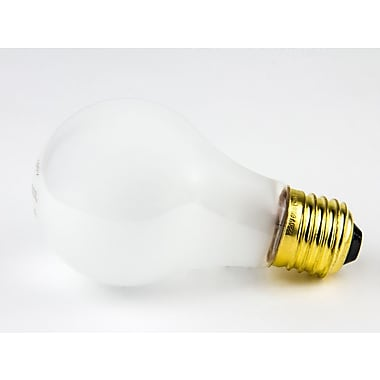 Bulbrite® 60 Watt 220 Volt A19 Bulb, Frosted/Warm White