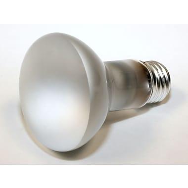 Philips 45 Watt 120 Volt R20 Reflector Flood Bulb, Frosted/Warm White
