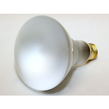 Bulbrite® 65 Watt 120 Volt BR30 Frosted Halogen Reflector Flood Bulb, Warm White