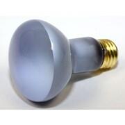 Bulbrite® 45 Watt 120 Volt R20 Reflector True Daylight Flood Bulb, Frosted/Neodymium