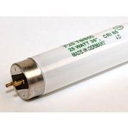 Ushio Ultra 8™ 25 Watt 36 T8 2250 lm Fluorescent Bulb, Bright White