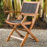 Buyers Choice Phat Tommy Folding Dining Arm Chair (Set of 2)