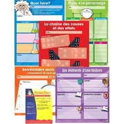 French Graphic organizer for narrative writing