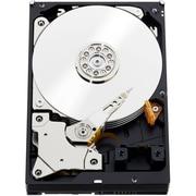 Western Digital® WD1001FYYG 1TB 7200 RPM 3.5 SAS Hard Drive