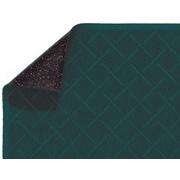 "Andersen Enviro Plus Polyester Fiber Wiper Mat 72"" x 48"", Southern Pine"