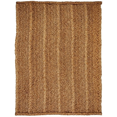 Donny Osmond Home Patagonia Jute Rug 4'x6'