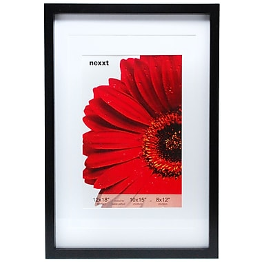 Nexxt Gallery Double Matted Wood Frame, 12