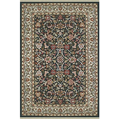 American Home Rug Co. American Home Classic Kashan Navy/Ivory Area Rug; 4' x 6'