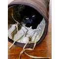 ABO Gear Pet Fun Tunnel; Brown