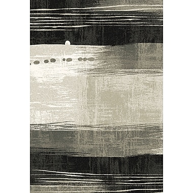 Dynamic Rugs Infinity Silver/Black Area Rug; 6'7'' x 9'6''