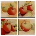 McGowan Tuftop Apples Coasters (Set of 4)