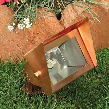 Dabmar Lighting 1-Light Flood Light; Antique Bronze