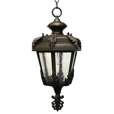 Melissa Parisian Elegance 1 Light Outdoor Hanging Lantern; Old Copper