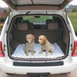 PoochPad Products Reusable Absorbent SUV Boxed Pad