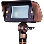 Dabmar Lighting 1-Light Flood Light; Antique Bronze