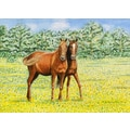 Betsy Drake Interiors Horses Placemat (Set of 4)