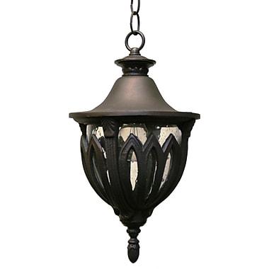 Melissa Tuscany 1-Light Outdoor Hanging Lantern; Aged Silver