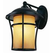 TransGlobe Lighting Outdoor 1 Light Wall Lantern; 13.5'' H x 10'' W x 11.75'' D