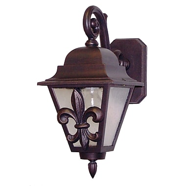 Melissa Americana 1-Light Outdoor Wall Lantern; Old Iron