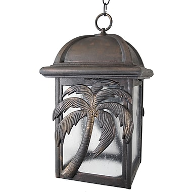 Melissa Americana 1 Light Outdoor Hanging Lantern; Aged Silver