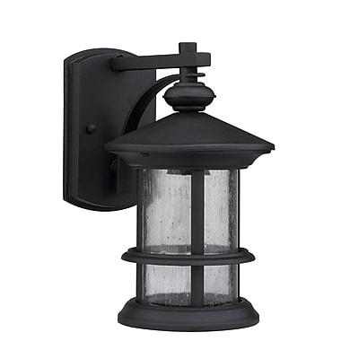 Chloe Lighting Ashley Superiora 1-Light Outdoor Wall Lantern; Black