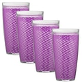 Kraftware Fishnet 24 Oz. Double Wall Insulated Tumbler (Set of 4); Purple