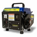 BLUE MAX 1,250 Watt Portable Generator