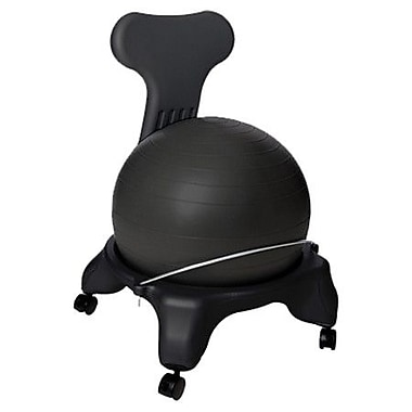 AeroMAT Exercise Ball Chair