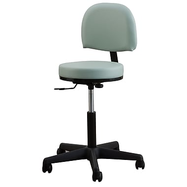 Oakworks Height Adjustable Premium Stool w/ Backrest; Espresso